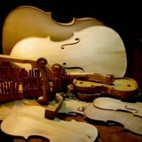 Violin Woods